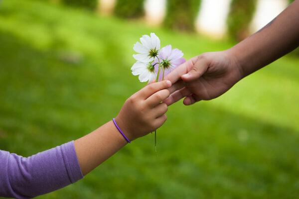 handing-flower-friend